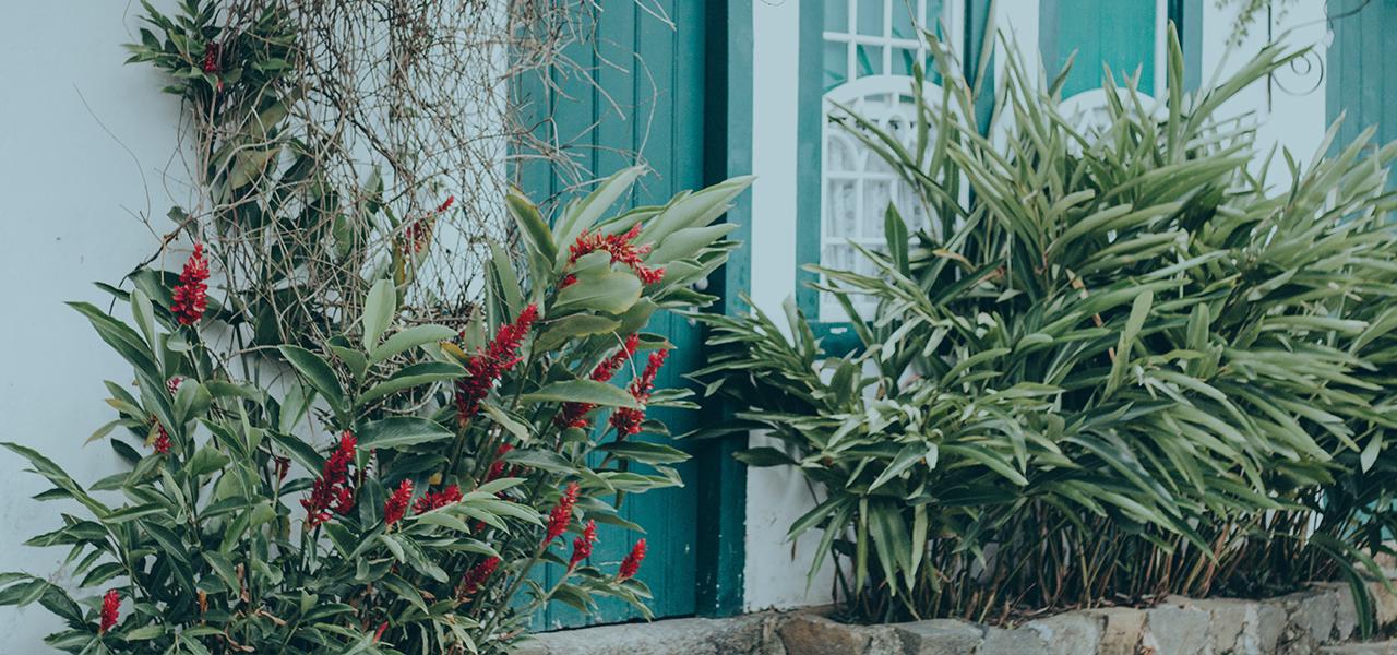 C mo decorar un jard n peque o y que luzca encantador for Como adornar un jardin